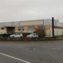 Location Local d'activités Vaulx-en-Velin 1140 m²