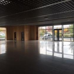 Location Local d'activités Ballainvilliers 2412 m²