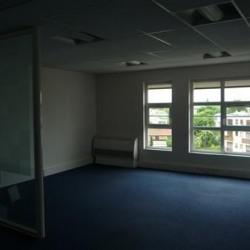 Location Bureau Maisons-Laffitte 460 m²