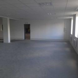 Location Entrepôt Corbas 9736 m²