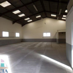 Location Local commercial Colomiers 314,61 m²
