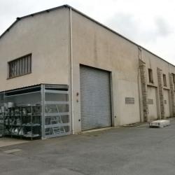 Vente Local d'activités Montereau-sur-le-Jard 600 m²