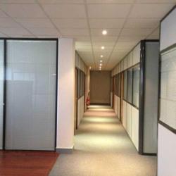 Location Local d'activités Courbevoie 2040 m²