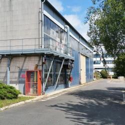 Vente Local d'activités Le Plessis-Robinson (92350)