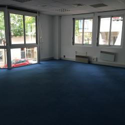 Location Bureau Villeurbanne 1039 m²