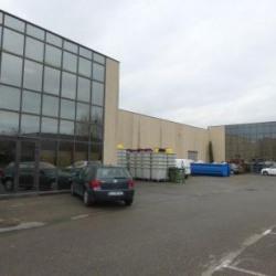 Vente Local d'activités Pertuis 1265 m²
