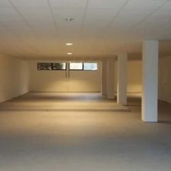 Location Bureau Sartrouville 289 m²
