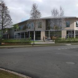 Vente Local d'activités Bailly-Romainvilliers 5260 m²