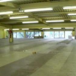 Vente Local d'activités Clermont-Ferrand 3980 m²