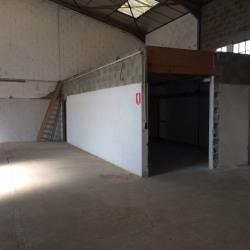 Vente Local d'activités Saint-Maurice-de-Beynost 640 m²