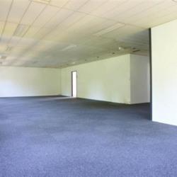 Location Bureau Lognes 180 m²