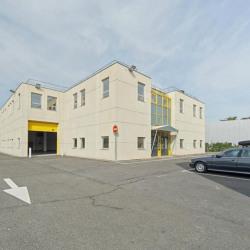 Location Local d'activités Villeneuve-la-Garenne 1759 m²