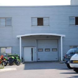 Location Local d'activités Montpellier 650 m²