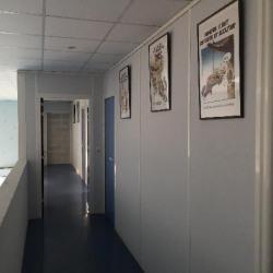 Location Local d'activités Savigny-le-Temple 390 m²