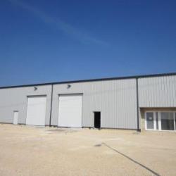 Location Local d'activités Ville-en-Vermois 313 m²