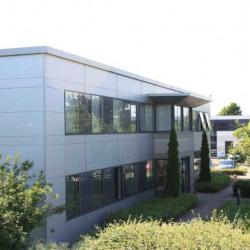 Location Bureau Schiltigheim 25 m²