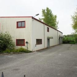 Location Local d'activités Bourg-en-Bresse (01000)