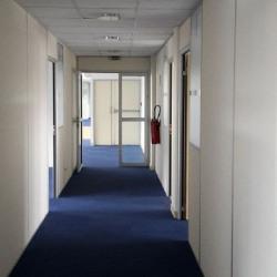 Location Bureau Asnières-sur-Seine 431 m²
