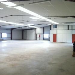 Location Local d'activités Vannes 740 m²