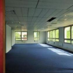 Vente Local d'activités Émerainville 822 m²