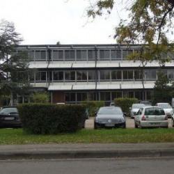 Vente Local d'activités Metz (57070)