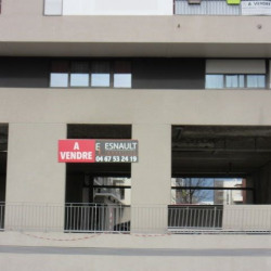 Vente Local commercial Montpellier 217 m²