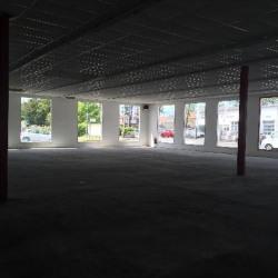 Location Local d'activités Coignières 359 m²