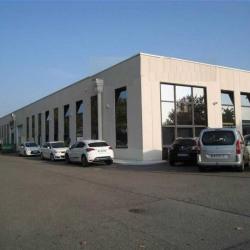 Location Local d'activités Toulouse 315 m²
