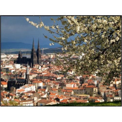 Location Local commercial Clermont-Ferrand 346 m²