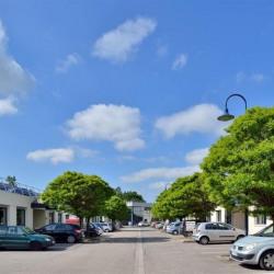 Location Local d'activités Saint-Genis-Laval 383 m²