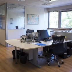 Vente Bureau Montbonnot-Saint-Martin (38330)