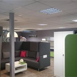 Location Local d'activités Villeurbanne 1008,92 m²