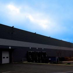 Location Local d'activités Avrainville 4400 m²