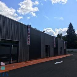 Location Local commercial Tignieu-Jameyzieu 315 m²