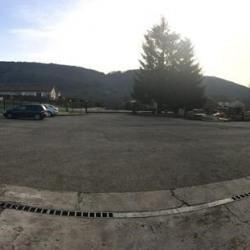 Vente Local d'activités Chavannes-sur-Suran 1250 m²