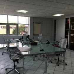 Vente Local d'activités Carrières-sur-Seine 800 m²