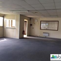 Vente Local d'activités Torcy 1244 m²