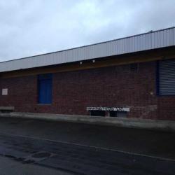 Vente Local d'activités Saint-Cyr-l'École 1073 m²