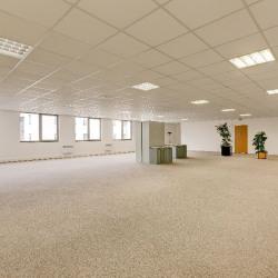 Location Local d'activités Argenteuil 1042 m²