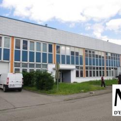 Location Bureau Irigny (69540)
