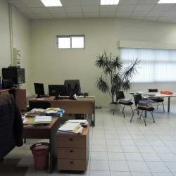 Vente Local d'activités Chelles 223,9 m²