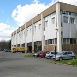 Vente Local d'activités Montigny-le-Bretonneux 16341 m²