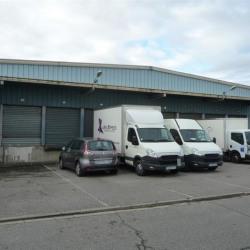 Location Local d'activités Toulouse 1650 m²
