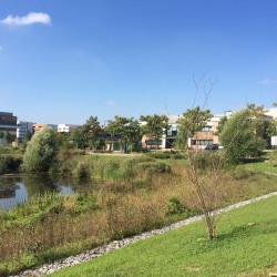 Location Entrepôt Villeneuve-la-Garenne 2179 m²