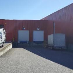 Location Local d'activités Valence 1600 m²