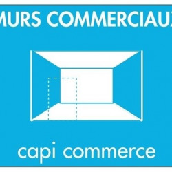 Vente Local commercial Aizenay 310 m²