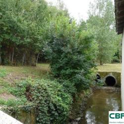 Vente Local d'activités Limoges 2100 m²