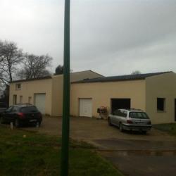 Vente Local d'activités Vannes 245 m²