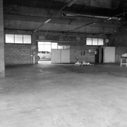 Location Local commercial Civrieux-d'Azergues 660 m²