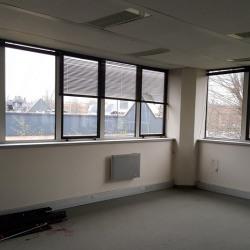Location Bureau Saint-Thibault-des-Vignes 331 m²